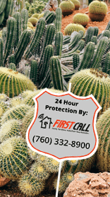 First Call Security & Sound